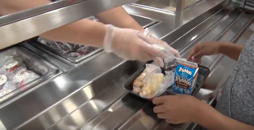 Child hands receiving a school lunch from lunch worker